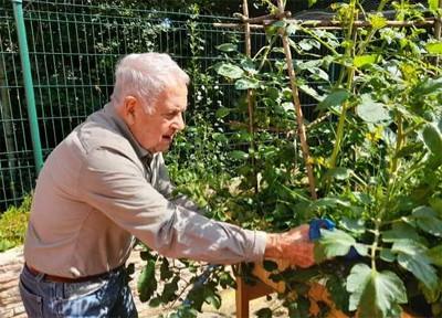Orpea les pastoureaux jardinage