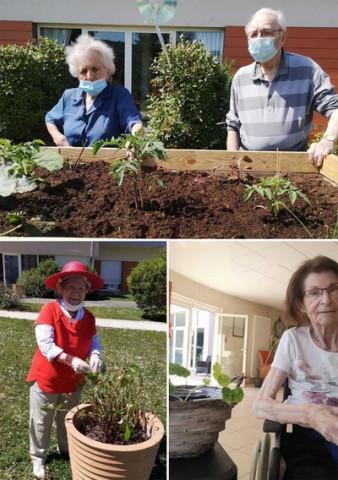 Orpea Les Cygnes jardinage