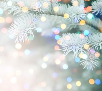 Orpea Le verger d'Anna Noël solidaire