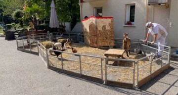 orpea résidence du Vexin ferme