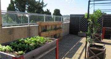 Orpea Le Bois joli jardin thérapeutique