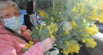 Orpea Le Bois joli mimosas
