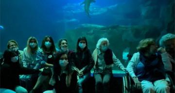 Orpea Le Corbusier aquarium
