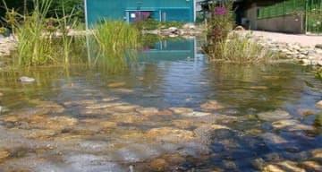 Orpea Renouard aquarium