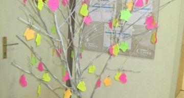 Orpea Les Rives Saint Nicolas arbre rêves