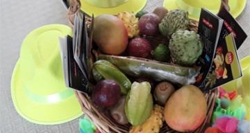 orpea le saule fruits