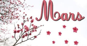 Orpea Les Vignes mars 2019