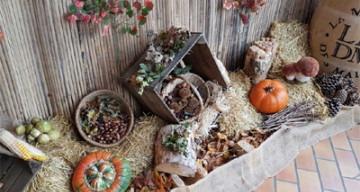 Orpea Les Pivoines expo automne