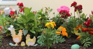 Orpea Chateau notre dame jardinage